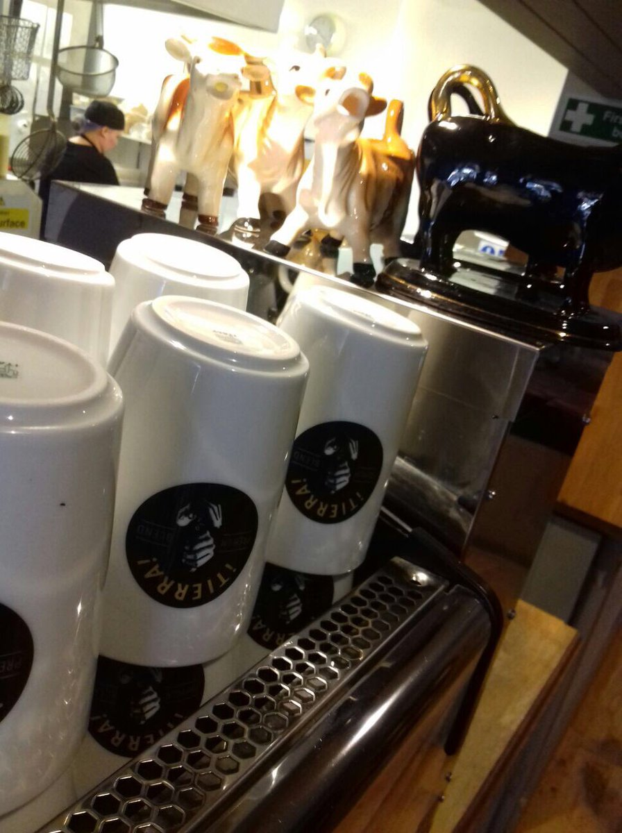 fhk Kendal Coffee Cups